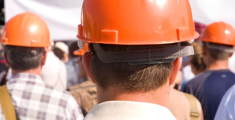 The back of multiple men's heads with orange hard hats on