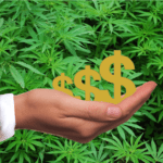 Hand holding an illustrated dollar sign with cannabis plants in the background