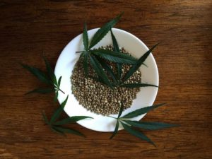 Hemp seeds in a bowl and hemp leaves